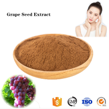 Buy online active ingredients Grape Seed Extract powder