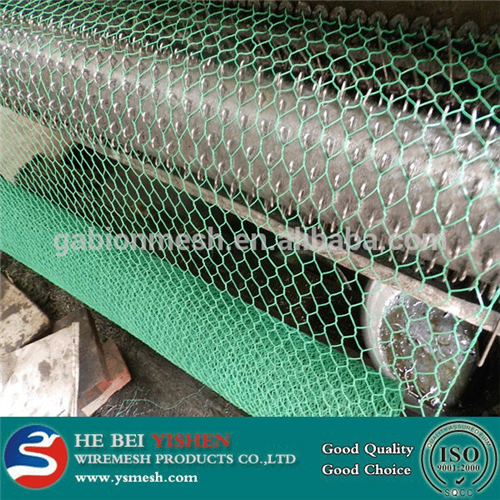 Galvanized hexagonal chicken fence/PVC chicken fence