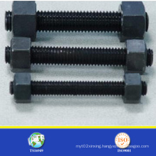 Made in China Carbon Steel Stud Bolt (with nut)