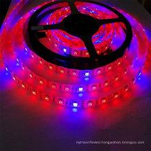 LED Plant Grow Strip Light, 5050 Waterproof Full Spectrum Red Blue 4:1 Growing Lamp Aquarium Greenhouse