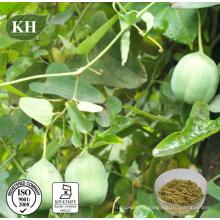 Extrait de Ristolochia pure extrait naturel 5: 1; 10: 1; 20: 1