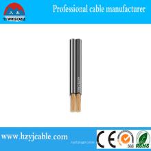 10 años 18AWG Spt-1 American Cable de alimentación paralelo estándar para colgar la lámpara