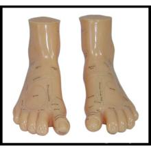 Massage-Fuß-Modell (M-9-17) Akupunktur