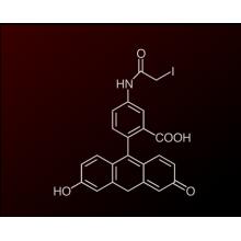 Fitc Fluorescein Isothiocyanate