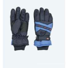 Ski-Gloves (SL6-104)