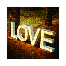 Customization Outdoor Decorative Large Lighted Up Letter  channel letter  led display outdoor advertising