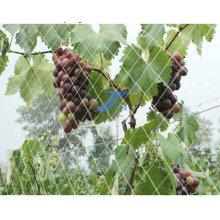 Kunststoff-Faser Anti-Bird Netting (TS-E119)