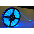 Alto Lumen DC12 24V SMD5050 Flexible luz LED Strip