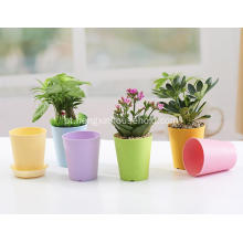 Thicken Colorful Cylinder Plastic Plant Pot-3.5inch