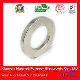 Custom Permanent Ring NdFeB/Neodymium Magnet with RoHS