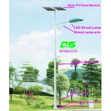 WPSRR-8101 3~15m Municipal Road Hot DIP Galvanized Steet Light Pole style