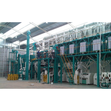 100 Tons per day wheat flour mill machine
