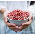 Preço de amendoim fresco de exportador de amendoim de Shandong