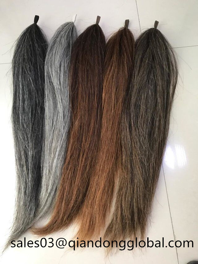 Horse Tail Extension