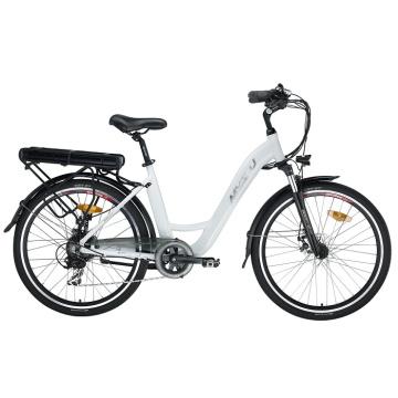 Bicicleta eléctrica Fat Tire Leisure