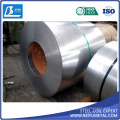 St13 DC03 SPCC CRC Cold Rolled Steel Coil