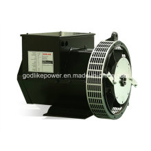 Ce, ISO Approved China Famous Factory 22kw Brushless Alternator (JDG184F)