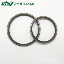 BNR Metal Oil Seal DKB DKBI for Excavating Hydraulic Syetem
