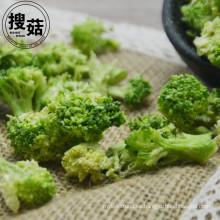 Envasado al vacío y brócoli de estilo seco