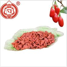 The Dietary Red Dried Goji Berries Fruit