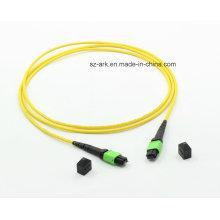 MPO-MPO OS2 (9/125) Câble à fibre optique (1.5M, 12core)