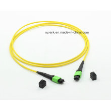 MPO-MPO OS2 (9/125) Optical Fiber Cable (1.5M, 12core)