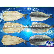 Hering gefrorenes Filet Clupea pallasii