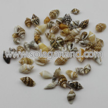 6-16MM mały drobny spirala Natural Sea Shell koraliki Charms