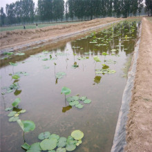 HDPE Waterproof Impermeable Geomembrane for Drip Irrigation