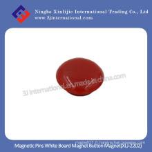 Magnet Magnet Magnet Magnet (XLJ-2202)
