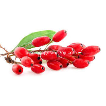 Goji Berry Plant 180Grains / 50g Organic Goji Berry