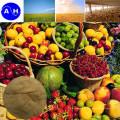 Fonte de plantas Aminoácidos 60% Baixa Chloridion Aminoácidos de origem vegetal pura