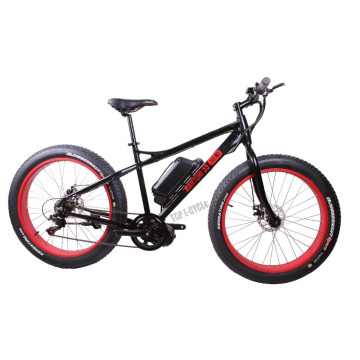 8FUN motor 48V 500W beach CE fashion design fat tire electric bike