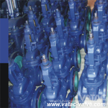Cast Iron&Ductile Iron Gg25&Ggg40 DIN Flanged Gate Valve