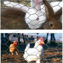 Rede de arame hexagonal para malha de frango
