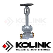 Bellows Seal Gate Valve (Butt-weld End)