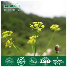 Bupleurum Powder Extracts, 5% Bupleurum Saikosaponins (NAT-29)