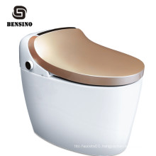 Multifunction Electronic Bidet Toilet Without Tank,Wash Automatic Smart Ceramic Hygiene Toilet