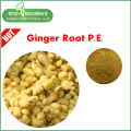 Natural ingredents Brownish Yellow ginger root extract
