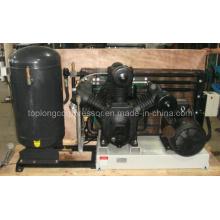 Bomba de aire del compresor de aire que sopla de la botella del animal doméstico (Tpt-1.3 / 30 15kw)