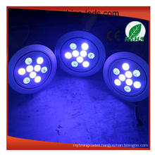 Dimmable/RGB/RGBW LED Ceiling Light