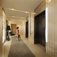 Small House Commercial Villa Residential Home Elevator Passenger Lift