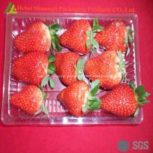 Prato de frutas de plástico descartável retangular