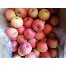 2015 Свежее гала-яблоко из Шаньдун-Борена