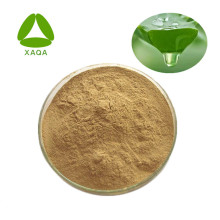 Aloe Vera Extract Powder 10:1 With Competitive Price