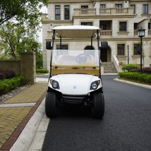 2019 Cheap Custom Portable 2 Seats Electric Golf Cart Modern Design