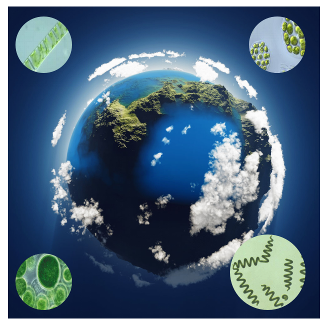 Microalgae's Earth