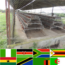 90 birds automatic feeding chicken equipment poultry chichen cage for sale farm