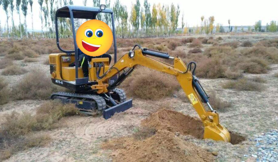 New Condition Hydraulic Excavator
