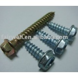 Washer head Self tapping screw